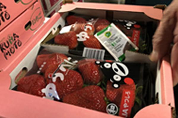 e-Freshで青果物の鮮度保持・劣化防止